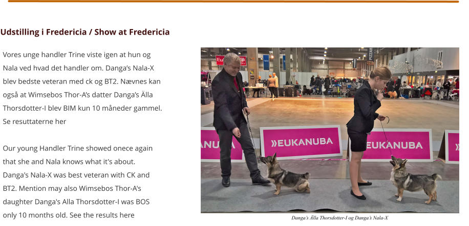 Udstilling i Fredericia / Show at Fredericia Vores unge handler Trine viste igen at hun og Nala ved hvad det handler om. Danga's Nala-X blev bedste veteran med ck og BT2. Nævnes kan også at Wimsebos Thor-A's datter Danga's Älla Thorsdotter-I blev BIM kun 10 måneder gammel. Se resuttaterne her  Our young Handler Trine showed onece again that she and Nala knows what it's about. Danga's Nala-X was best veteran with CK and BT2. Mention may also Wimsebos Thor-A's daughter Danga's Alla Thorsdotter-I was BOS only 10 months old. See the results here Danga's Älla Thorsdotter-I og Danga's Nala-X